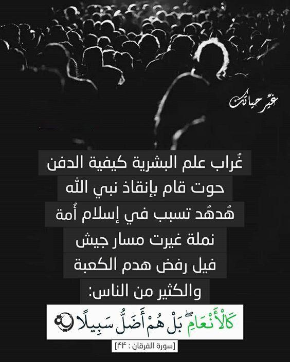 آية غيرت حياتي Quran Verses Phone Support