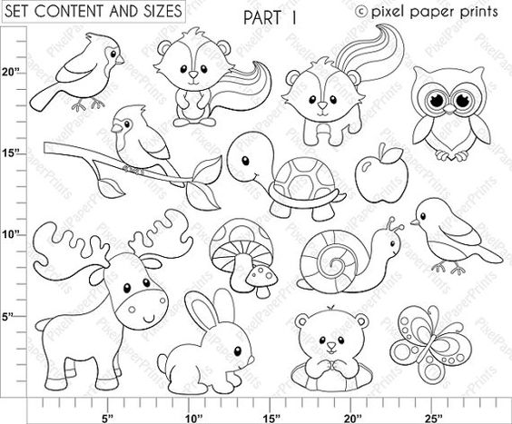 Forest Friends - Digital stamps | High quality images, Coloring ...
