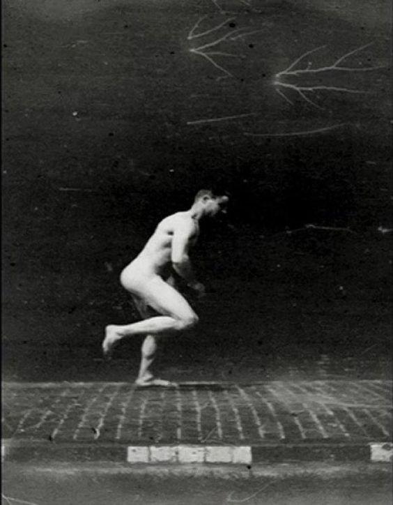 """Los estudios de movimiento de Étienne Jules Marey (1830-1904), médico y fotógrafo francés que realizó desde 1863 su """"método gráfico"""" para estudiar el movimiento utilizando instrumentos de registro fotográficos. Publicó en 1873 sus resultados en el libro titulado """"La machine animale"""""""