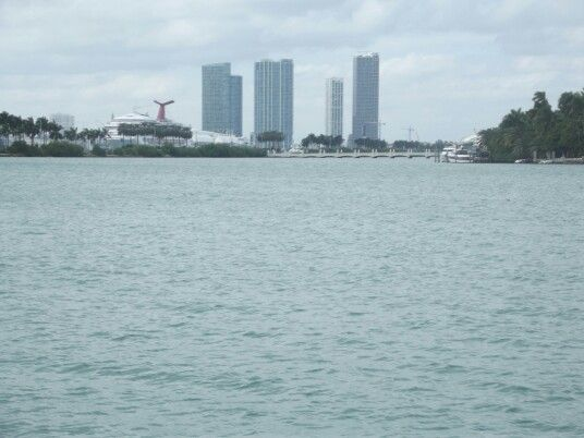 Saudades... Miami