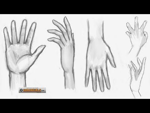 How to draw hands, step by step front and back