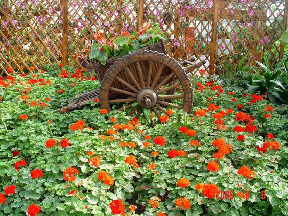 garden plans and ideas | Flower Garden Ideas Beijing Flower Garden 300x225 Flower Garden Ideas ...