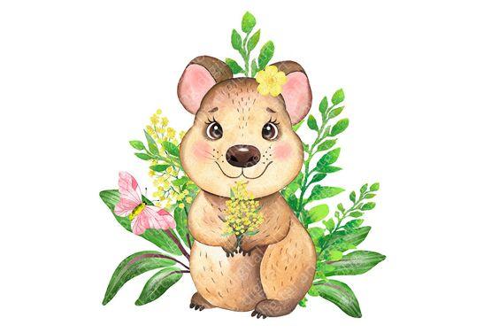 Australian Animals Clipart Koala Platypus Quokka Flowers Etsy In 2021 Australian Animals Animal Clipart Baby Animal Art