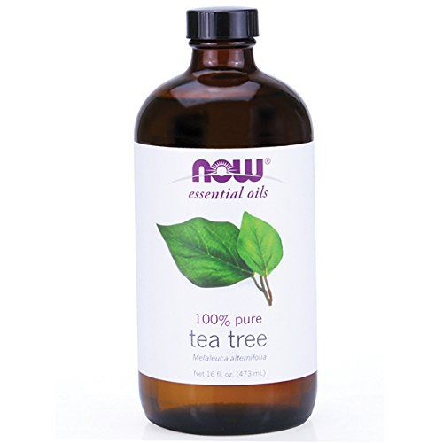 Tea Tree Oil 16 oz.  //Price: $ & FREE Shipping //     #hair #curles #style #haircare #shampoo #makeup #elixir