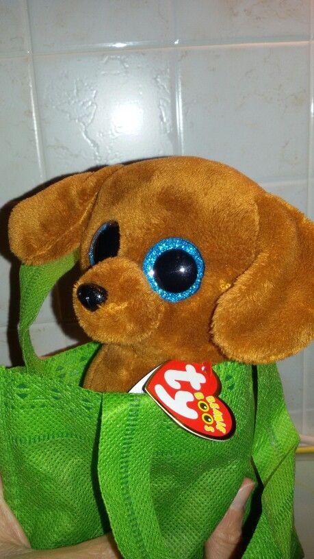 #rex #thedog mine inthis Sunday 10.1 '16 in #toy #peluche 'Kitta' #cane #brown #blueeyes occhi blu. #inbag borsa verde #green T.7$ #build