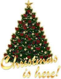 árvores de natal - Pesquisa Google