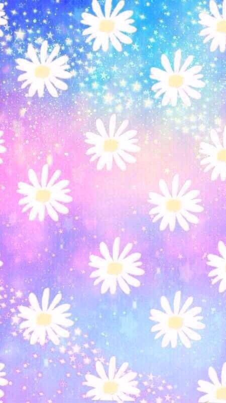 daisy wallpaper backgroundswallapapers pinterest