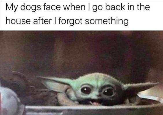 Morning Funny Meme Dump 38 Pics