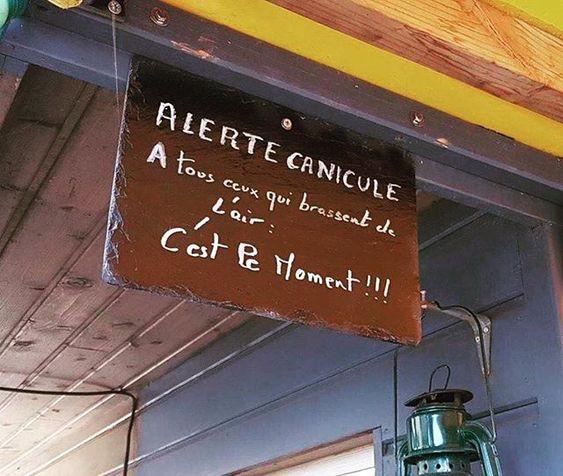 Mdr Allez on a besoin de vous #humour #canicule