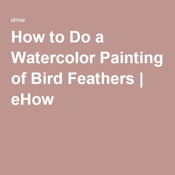 How to Do a Watercolor Painting of Bird Feathers | eHow