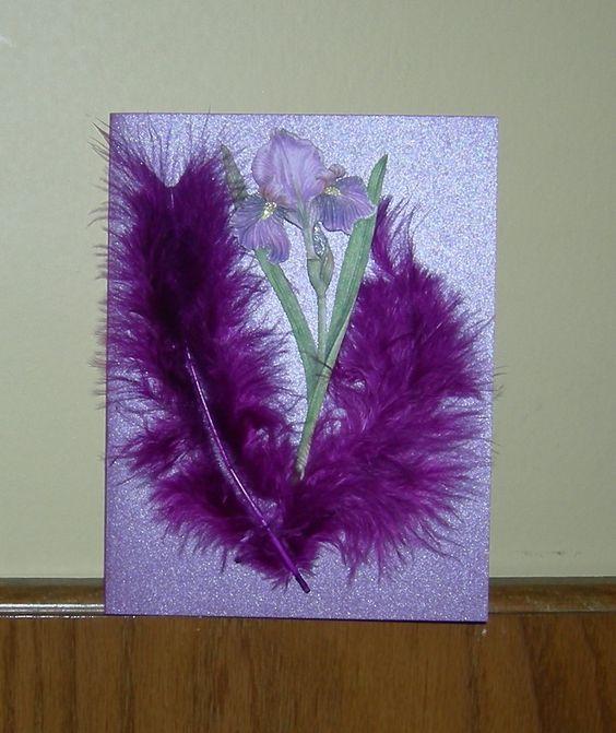 Plum feathers surround a pretty iris flower;   www.facebook.com/uniquelyvalentine