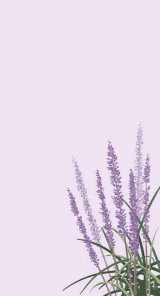 7 Cute Aesthetic Love Quotes Lavender Aesthetic Landscape Wallpaper Simple Wallpapers