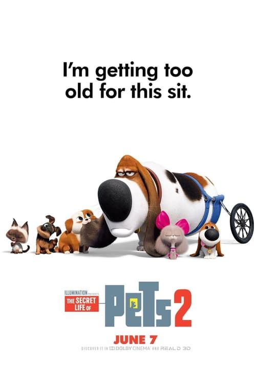Descargar The Secret Life Of Pets 2 2019 Pelicula Online