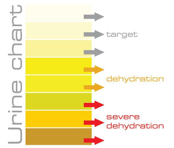 Urine Chart How to see if you are hydrated Pinterest - sample urine color chart