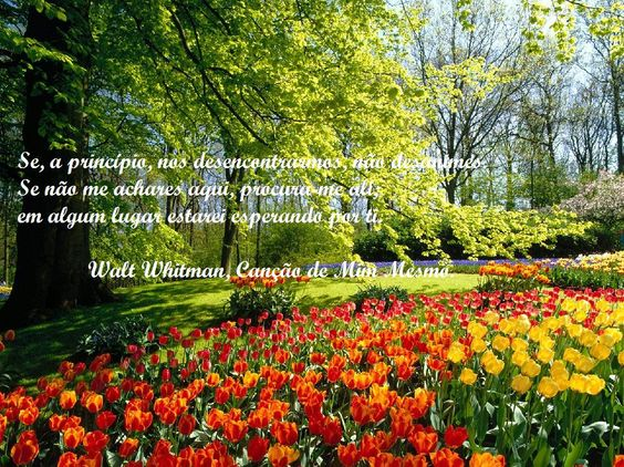 Seres dono da tua vida implica teres um sonho pelo qual te motivares e onde vais buscar a energia para continuar, mesmo que os obstáculos surjam. http://blog.eunicemsantos.com/blog/seres-dono-da-tua-vida-futura-pode-comecar-hoje
