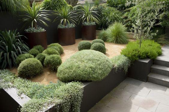 Am Nagement Jardin Moderne Arbustes Palmiers Gramin Es Ornementales Jardin Pinterest