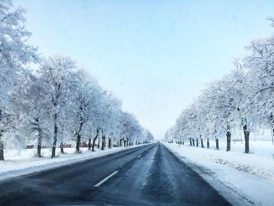 Traveling  to Kėdainiai  #winter #landscape #nature #lithuania #lithuanianature #travel #travelling #bestofbaltic #winterday #vsco #vscolithuania #vscogood #cold #europe #vscoeurope #snow #beautifulnature #ilovenature #realwinter #whiteday by rasakuz