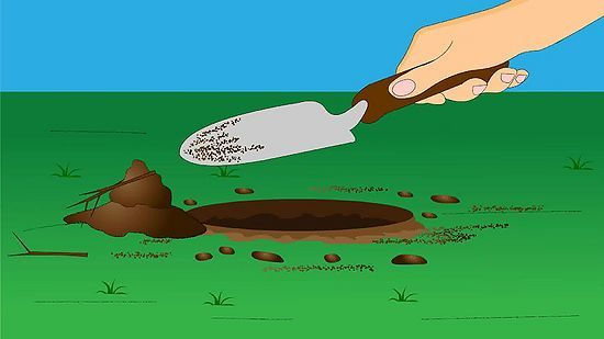 como medir o ph do solo