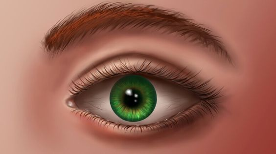 An eye I drew on Photoshop