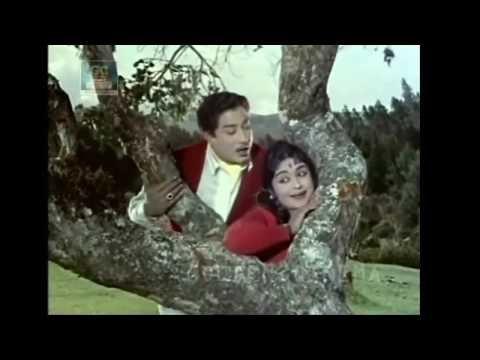 Chittu Kuruvi Mutham Koduthu Puthiya Paravai Movie Songs Hd Sivaji Ganesan Saroja Devi Youtube In 2020 Movie Songs Songs Thriller Film