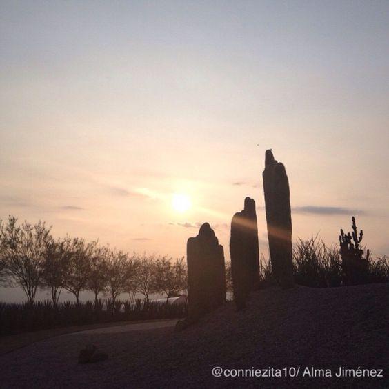 #fotos #fotografía #jardinesdeméxico #cuernavaca