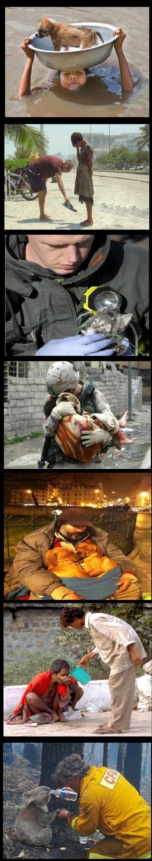 Faith in humanity- Die Welt ist schöner als wir manchmal glauben. Man muss es nur sehen.