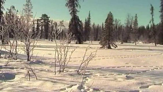 Natale In Norvegia e Finlandia La Lapponia Rovaniemi il Villaggio di Bab...