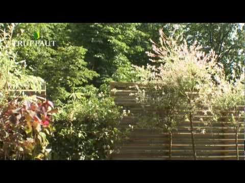 Amenagement De Terrasse Le Balcon Oriente Nord Jardinerie Truffaut Tv Youtube Jardinerie Truffaut Amenagement Terrasse Jardinerie