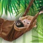 Monkey Ferret Hammock just $15.96. Quantity discounts available, in case you need A LOT of monkey ferret hammocks.