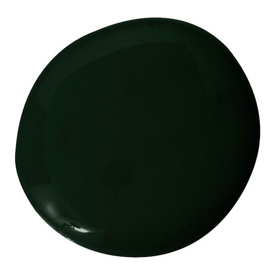 Benjamin moore black forest green home pinterest for Dark forest green paint