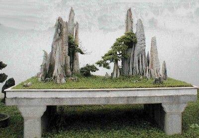 Foto de paisaje con bonsáis fantástico - INFOJARDIN