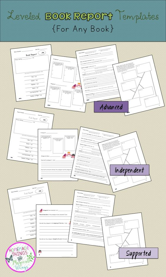Sample Book Report Format       Free Documents in PDF  Doc  th Grade at Sage Hills   blogger