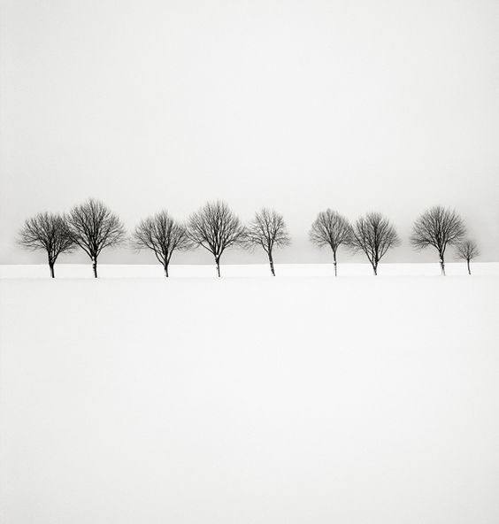 Photo Snow scene II - Hakan Strand