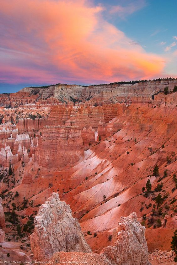 bryce canyon single girls Join other like-minded singles on an incredible weekend escape to bryce canyon national park trip includes all planning, accommodations, and wilderness guides.