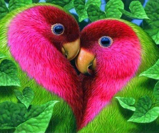 What love looks like…