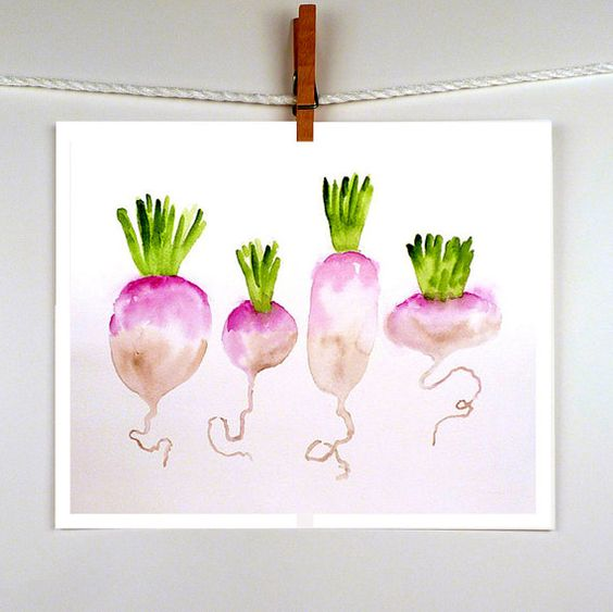 Turnips in Painting Watercolor Print - Vegetable Painting Food Art - Kitchen Home Decor Wall Decor Lavender Emerald Green - ACEO to 8 x 12