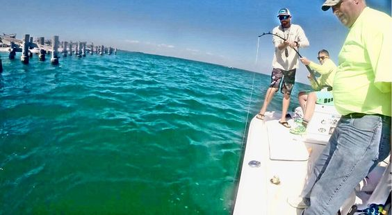 Derek hooked up on his #goliathgrouper  Beautiful day and such a fun family trip on the water!  #swfl #fishon #takeakidfishing #bocagrande #goliathgrouper