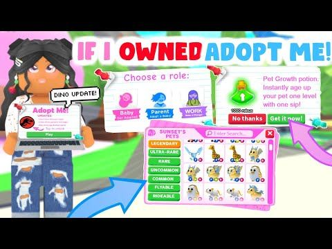 If I Owned Adopt Me Roleplay Sunsetsafari Youtube Adoption Donut Party Decorations Roleplay