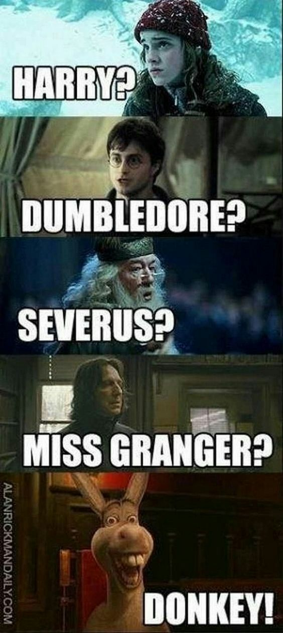 Harry Potter One Shots Fred X Reader Harry Potter Quotes Funny Harry Potter Funny Pictures Harry Potter Memes Hilarious