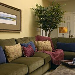 Traditional Family Room Olive Green Couches Design
