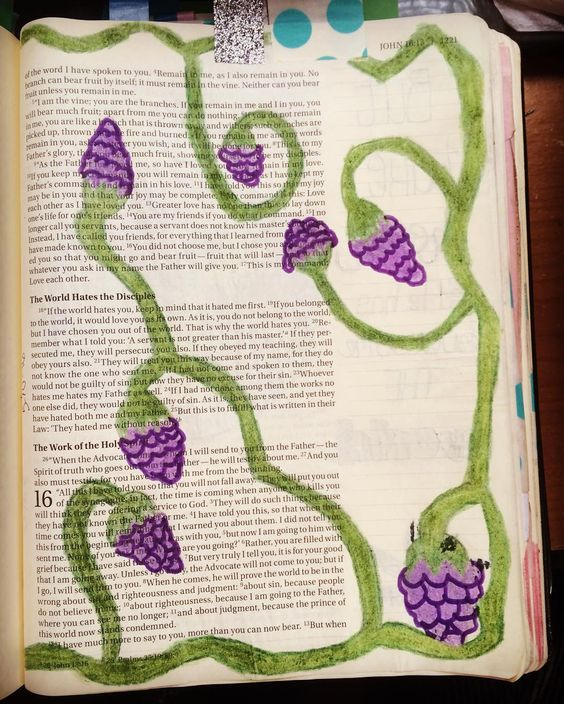 """John 15:5 """"I am the vine; you are the branches. If you remain in me and I in you you will bear much fruit; apart from me you can do nothing."""" #biblejournaling #biblejournalingcommunity #illustratedfaith #journalingbible #mybible by lindasierraxoxo"""