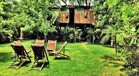 "https://flic.kr/p/zYKzGy | tree house resort jaipur- Hurry up book now call-8130781111 | Best tree House Resort in jaipur Bhiwadi Neemrana Manali,Tree House Jaipur - World's largest, most unique, 5 Star & Luxury Tree House Resort. Located atop ""trees"", the tree have several live branches running through the rooms making nature universal in the Lap of luxury. Jaipur Airport is 40 km from Tree House resort Jaipur call-8130781111/8130681111 treehousecottages.co.in/"