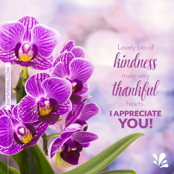 thank you ecards dayspring greetings pinterest
