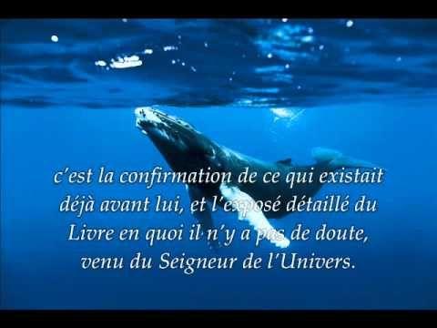 Sourate 10. Jonas (Yunus) / Récitation en VO & Traduction en Français par Saad Al-Ghamidi - YouTube