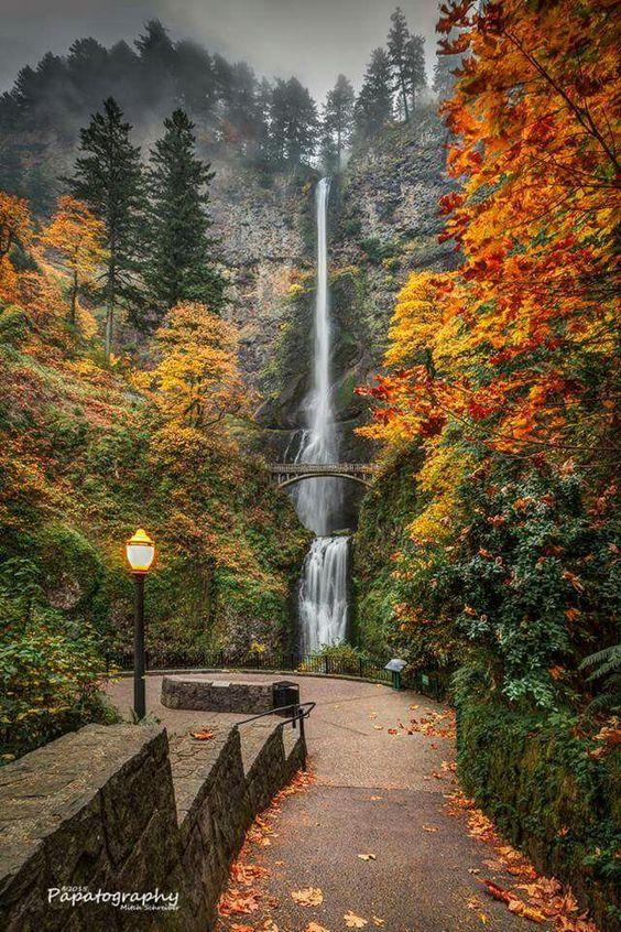Multnomah Falls,  Portland Oregon!   Most beautiful place I've been!