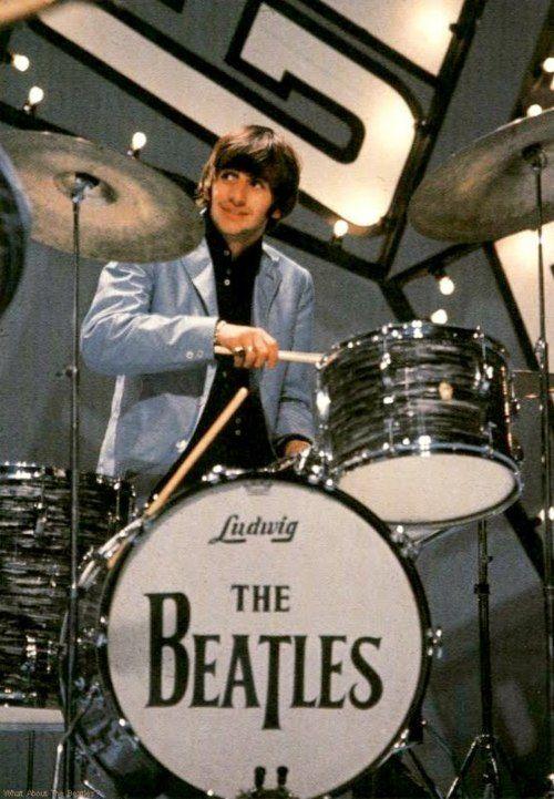 My precious Ringo: