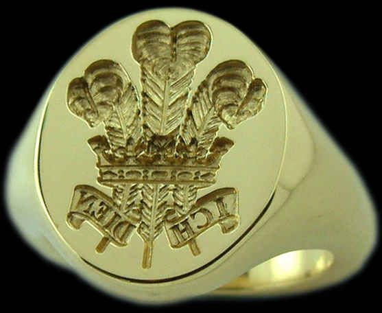 colleges  signet ring and feathers on pinterest