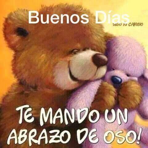 Buenos Dias Oso Abrazos De Oso Saludos De Buenos Dias Buenos
