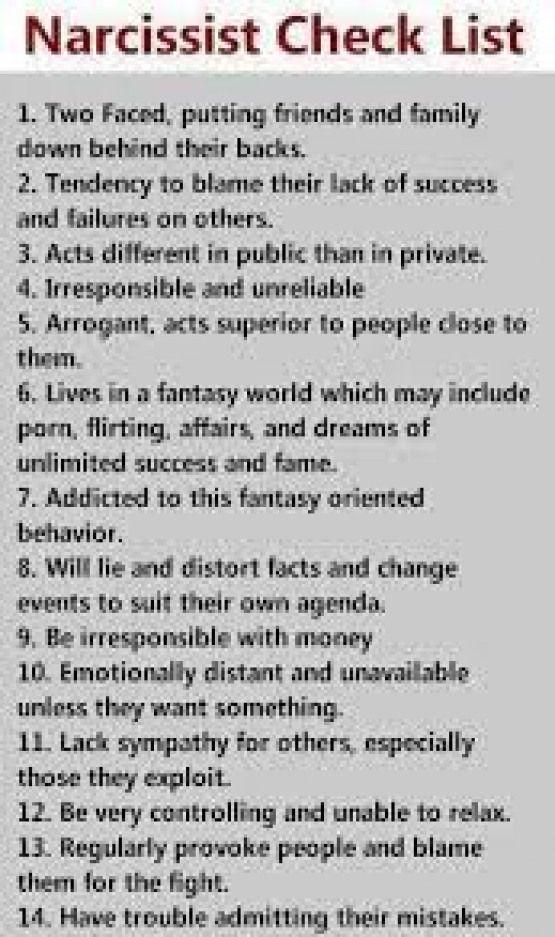 Narcissistic personality disorder partner