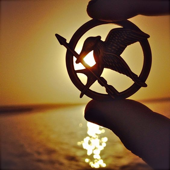 This is one of my favorite Mockingjay pin photos.